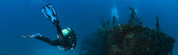 NEWS - Le Festival aquatic mondial , 43éme édition